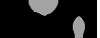 Viva Logo bw